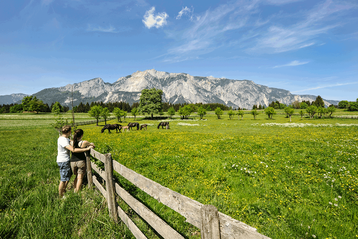 Naturpark Dobratsch über Villacher Alpenstraße inkl. Skywalk